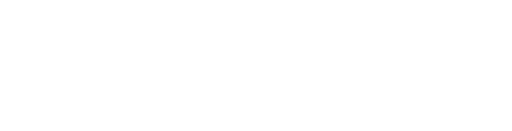 Beretta TD